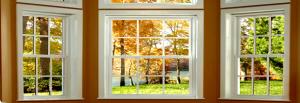 window_0101-300x103